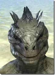 Inferno Ink Face Markings - Argonian Front