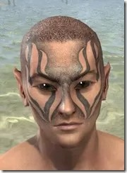 Inferno Ink Face Markings - Male Front