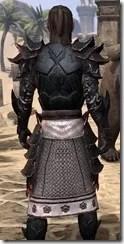 Telvanni Master Wizard - Male Close Back