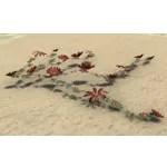 Flower Spray, Crimson Daisies