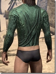 Prisoner Style 2 Shirt - Male Rear