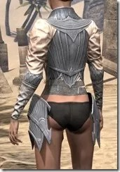 Ebonshadow Iron Cuirass - Female Rear