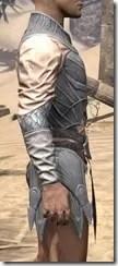 Ebonshadow Iron Cuirass - Male Right