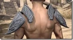 Hlaalu Iron Pauldron - Male Rear