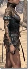 Wood Elf Dwarven Cuirass - Female Right