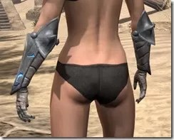 Dro-m'Athra Iron Gauntlets - Female Rear