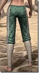 Ebonheart Pact Homespun Breeches - Female Rear