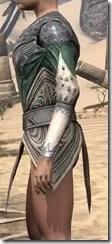 Ebonheart Pact Homespun Jerkin - Female Side