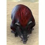 Flameback Boar