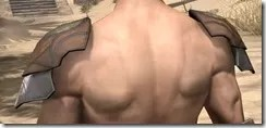 Outlaw Rawhide Arm Cops - Male Rear