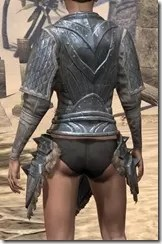 Skinchanger Iron Cuirass - Female Rear