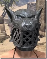 Skinchanger Iron Helm - Female Front