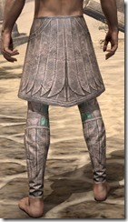 Divine Prosecution Medium Guards - Male Rear
