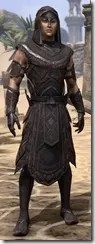 Elemental Succession - Male Robe Front