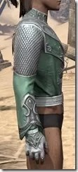 Sapiarch Iron Cuirass - Male Right