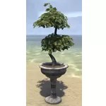 Alinor Potted Plant, Double Tiered