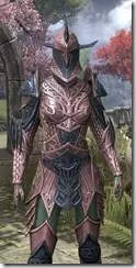 Auroran Knight Dyed Close Front