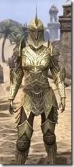 Auroran Knight Female Close Front
