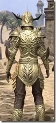 Auroran Knight Female Close Rear