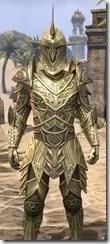 Auroran Knight Male Close Front