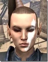 Double Diagonal Face Warpaint Female Front