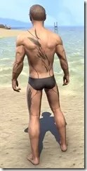Eagle Plume Flurry Body Tattoo - Male Rear