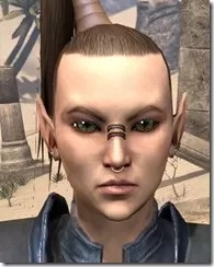 Fierce Pierce Facial Rings Female Front