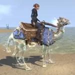Psijic Camel Exemplar