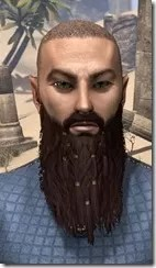 Ringed and Gathered War Beard Front