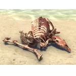 Animal Bones, Gnawed