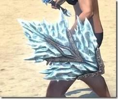 Iceheart Shield 2