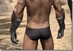 Silver Dawn Heavy Gauntlets - Male Rear