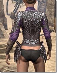 Stormlord Cuirass - Female Rear