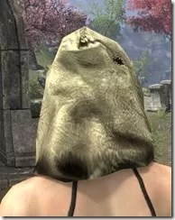 Hollowjack Spectre Mask - Dyed Rear