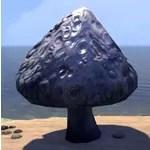 Mushroom, Large Puspocket