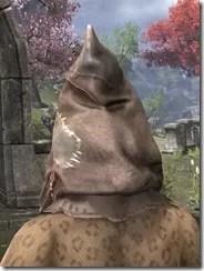 Scarecrow Spectre Mask - Khajiit Rear