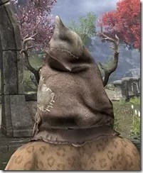 Thicketman Spectre Mask - Khajiit Rear