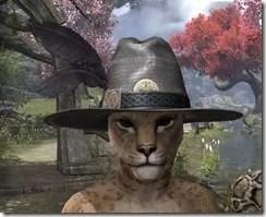 Werewolf Hunter Hat - Khajiit Front
