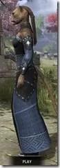 Ancestral Homage Formal Gown - Khajiit Female Side