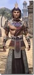 Elder Argonian Ancestor Silk - Male Robe Close Front