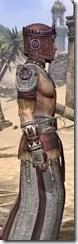 Elder Argonian Ancestor Silk - Male Robe Close Side