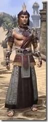 Elder Argonian Ancestor Silk - Male Robe Front