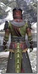 Elder Argonian - Argonian Male Robe Close Rear