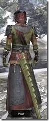 Elder Argonian - Argonian Male Robe Rear