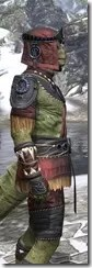 Elder Argonian - Argonian Male Shirt Close Side