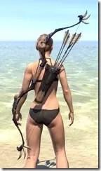 Elder Argonian Bow 1