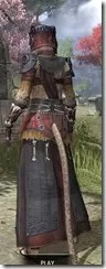 Elder Argonian - Khajiit Female Robe Rear