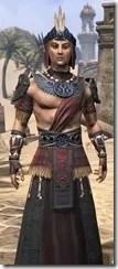Elder Argonian - Male Robe Close Front