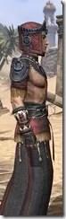 Elder Argonian - Male Robe Close Side