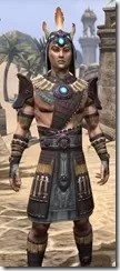 Elder Argonian Rubedo Leather - Male Close Front